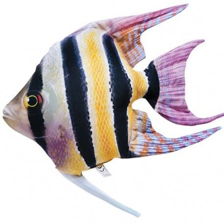 Pagalvėlė The Freshwater Angelfish