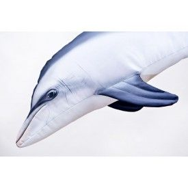 Pagalvėlė The Mini Bottlenose Dolphin, 125 cm