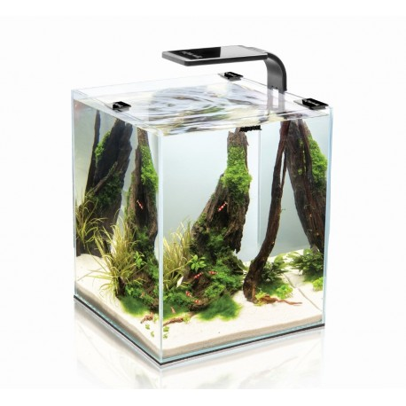 Aquael Shrimp Set Smart Black akvariumas su įranga krevetėms 10 l